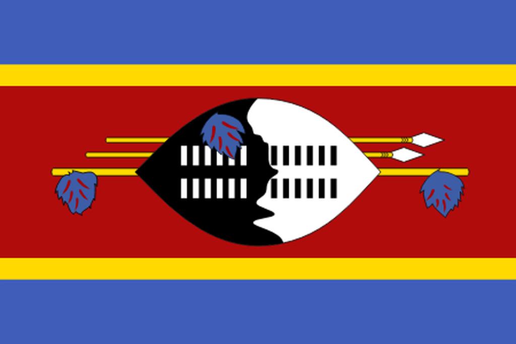 Flaga kraju ESWATINI [PNG]