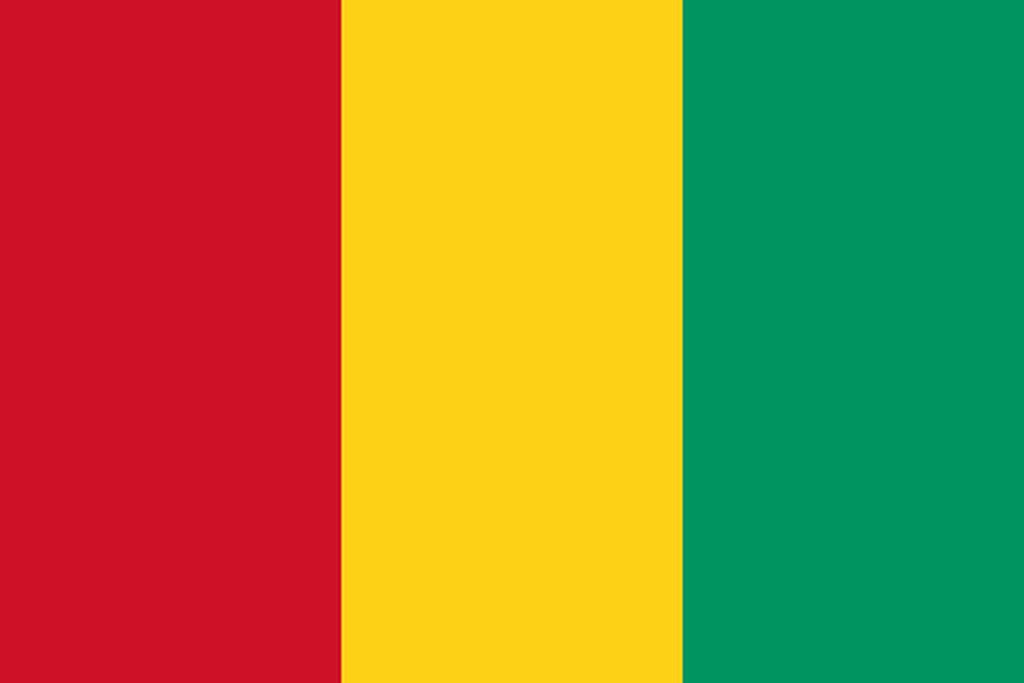 Flaga kraju GWINEA [PNG]