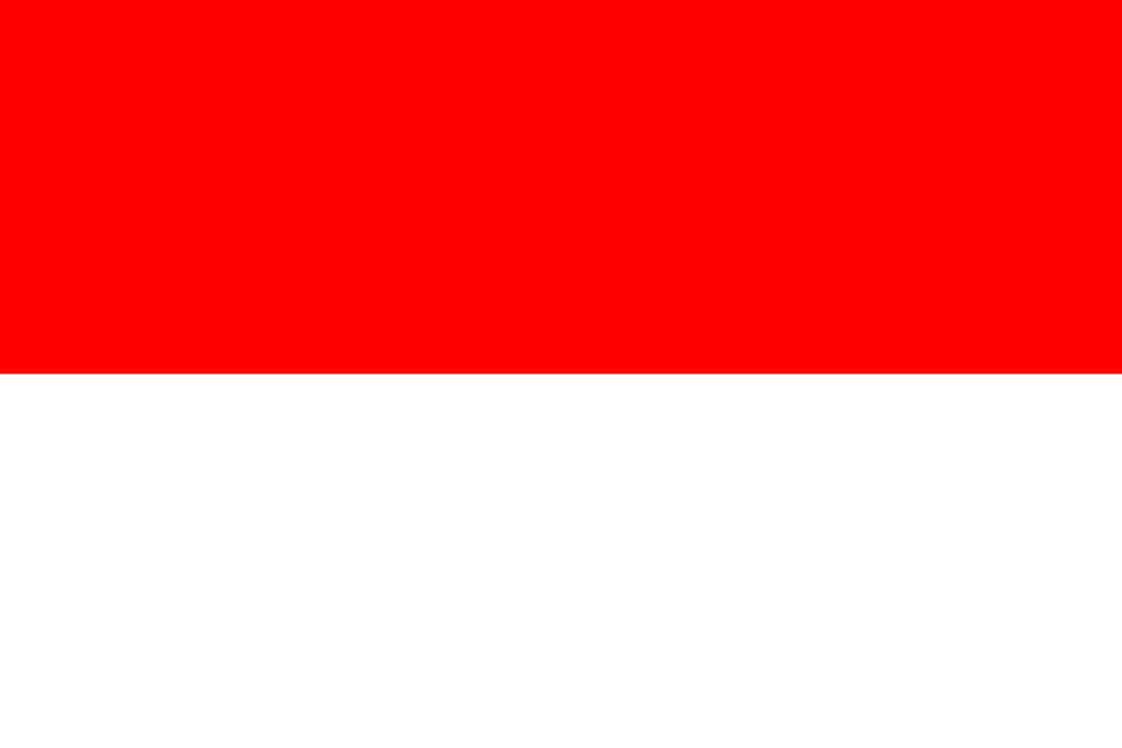 Flaga kraju INDONEZJA [PNG]