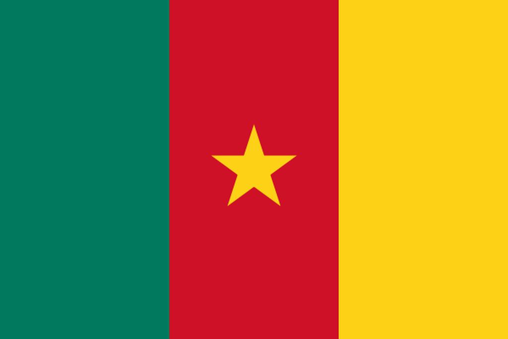 Flaga kraju KAMERUN [PNG]